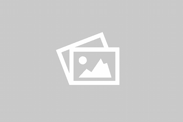 La Tortue des steppes-Testudo Horsfieldii