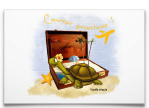 Carte postale impression tortue
