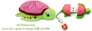 clé USB forme tortue