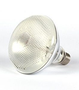 Ampoule  HQI UV Reptech 80/100/160W (sans ballast)
