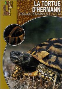 La tortue d'hermann : Testudo Hermanni Boettgeri