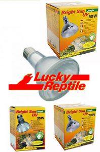 Ampoule HID «Bright Sun UV Jungle» LUCKY REPTILE® 35/50/70W (Nécessite un ballast)