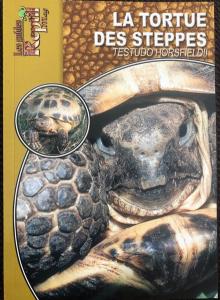 La tortue des steppes Testudo Horsfieldii